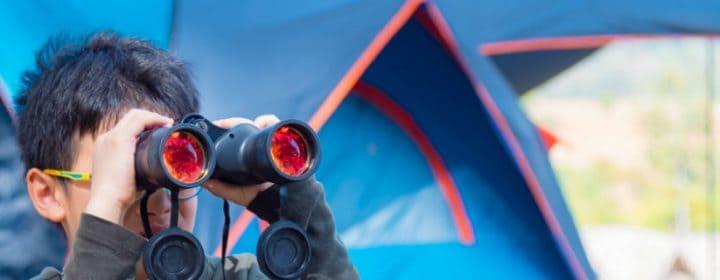 Welke vogel zit er voor jouw tent?