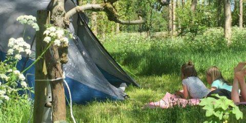 5 unieke campings in Nederland