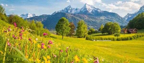 Kamperen in het laagseizoen: de natuur in bloei!