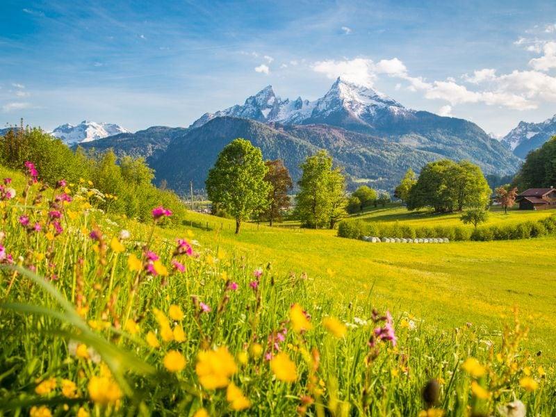 In het laagseizoen is de natuur op haar mooist en geniet je optimaal van de geuren en kleuren.