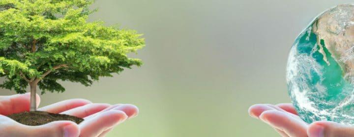 Een groene vakantie – 5 tips voor duurzaam kamperen