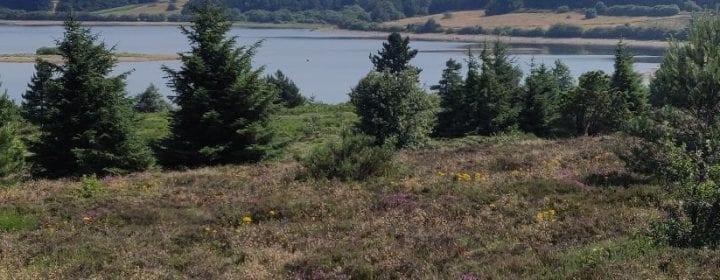 Uitzicht over een meer blak bij Lacaune