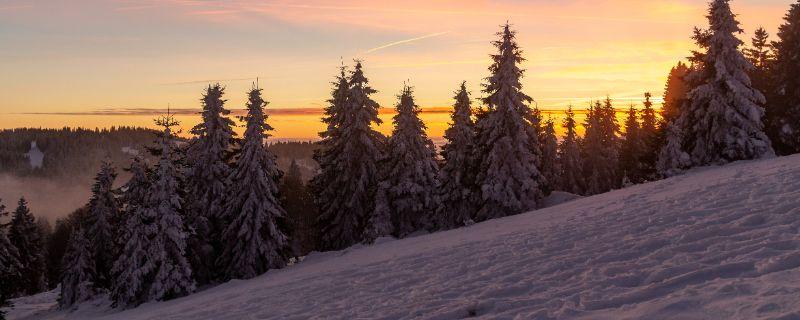 Das Feldberger Winterparadies – die Aussicht ist hier zu jeder Jahreszeit spektakulär.