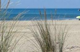 Stranden van Zeeland