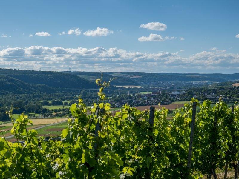 Het Beierse landschap wekt de romantiek tot leven. Geniet bijvoorbeeld van deze wijngaarden in het Taubertal en van de mooie dorpjes aan de Main.