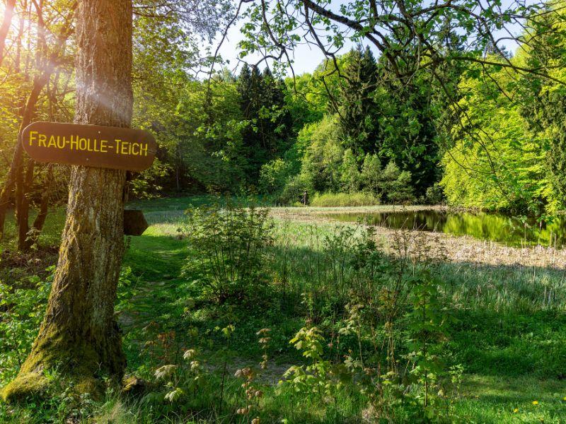 De Frau-Hollevijver ligt in het natuurgebied Hoher Meißner. Het is een van de gebieden waar de gebroeders Grimm inspiratie voor de beroemde sprookjes vonden.