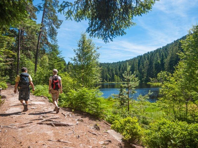 Wandelaars zijn helemaal op hun plek in het Zwarte Woud. Overal vind je van dit soort idyllische wandelpaden door de bossen.